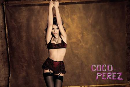monica-cruz-is-the-face-of-agent-provocateurs-fall-winter-2012-campaign.jpg